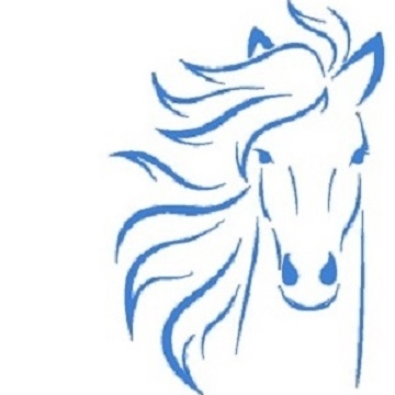 Workshop Paardencoaching: Persoonlijk Leiderschap na corona - Moordrecht